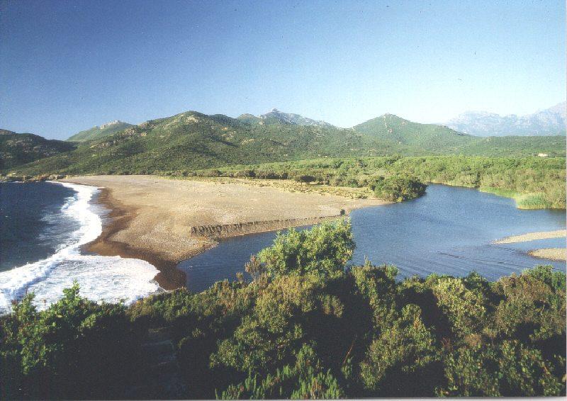 Badeurlaub Auf Korsika A Punta Galeria Korsika Hotel