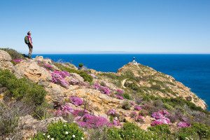 Halbinsel Revellata bei Calvi